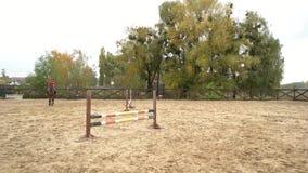 Dos caballos de montar a caballo de las mujeres jovenes en el terreno de entrenamiento almacen de metraje de vídeo