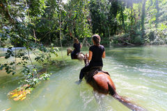 Dos caballos del paseo de las muchachas en el río Fotografía de archivo