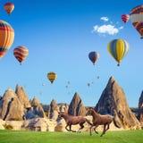 Dos caballos que corren y globos del aire caliente en Cappadocia, Turquía foto de archivo