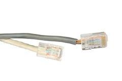 Dos cables de la red de ordenadores Fotos de archivo libres de regalías