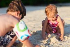 Dos cabritos que juegan junto en la playa Fotografía de archivo libre de regalías