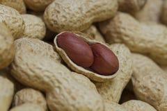 Dos cacahuetes en cáscara abierta Fotos de archivo libres de regalías