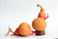 Dos calabazas viejas Foto de archivo libre de regalías