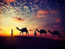 Dos cameleers con los camellos en dunas del deser de Thar Foto de archivo libre de regalías
