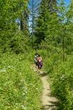 Dos caminantes que caminan en las montañas Fotos de archivo libres de regalías