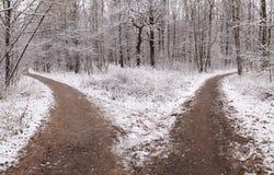 Dos caminos Fotos de archivo