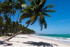 Dos Carneiros - Pernambuco Прая, Бразилия Стоковое Фото