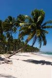 Dos Carneiros - Pernambuco Прая, Бразилия Стоковые Изображения