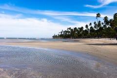 Dos Carneiros - Pernambuco Прая, Бразилия Стоковое фото RF
