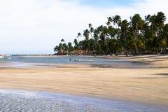 Dos Carneiros - Pernambuco Прая, Бразилия Стоковые Фотографии RF