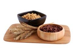 Dos cereales de los colores con la decoración Foto de archivo