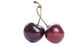 Dos cerezas de Bing imagen de archivo