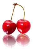 Dos cerezas en blanco Foto de archivo libre de regalías