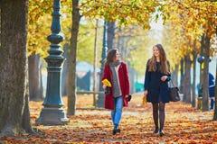 Dos chicas jóvenes en un día soleado de la caída Foto de archivo