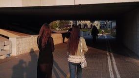 Dos chicas jóvenes están en la costa debajo del puente Igualaci?n de la caminata almacen de metraje de vídeo