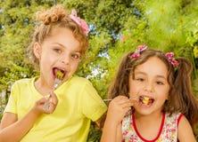 Dos chicas jóvenes hermosas, comiendo una fresa sana y las uvas usando una bifurcación, en un fondo del jardín Fotos de archivo libres de regalías