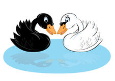 Dos cisnes de la historieta Fotografía de archivo libre de regalías