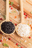 Dos clases de arroz en las cucharas de madera Fotografía de archivo libre de regalías