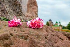 Dos claveles rosados en una piedra e iglesias en fondo Imagen de archivo