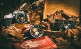 Dos cámaras y una lente con libros viejos, una caja de madera y las hojas Foto de archivo libre de regalías