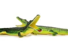 Dos cocodrilos Foto de archivo