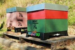 Dos colmenas de madera del Caja-estilo con las abejas el pulular Imagen de archivo libre de regalías