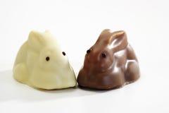 Dos conejitos del chocolate, primer Foto de archivo libre de regalías