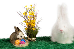 Dos conejos de conejito peludos lindos de pascua Imágenes de archivo libres de regalías