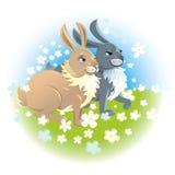 Dos conejos felices Foto de archivo libre de regalías