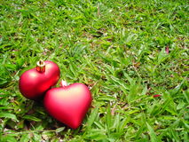 Dos corazones cariñosos con el copyspace Imagen de archivo libre de regalías