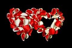 Dos corazones de pétalos color de rosa en fondo negro Día de tarjeta del día de San Valentín Imagen de archivo libre de regalías