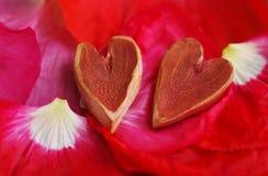 Dos corazones decorativos en los pétalos del rojo de la amapola Imagenes de archivo
