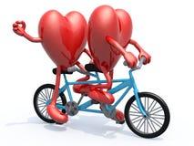 Dos corazones que montan la bicicleta en tándem Imágenes de archivo libres de regalías