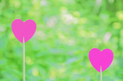 Dos corazones rosados Imagen de archivo libre de regalías