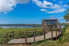 Dos Corvos de Ponta, Seixal Portugal Birdwatching Imagem de Stock Royalty Free