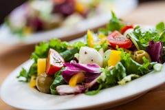 Dos cuencos de ensalada delicioso fresca con la mozzarella Imagen de archivo