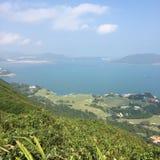 Dos de dragon de Hong Kong Image libre de droits