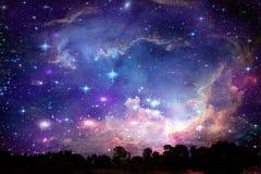 Dos de galaxie sur l'arbre sec de silhouette de ciel de coucher du soleil de nuage de nuit photos libres de droits