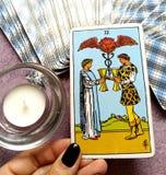 2 dos de la oferta de la carta de tarot de las tazas de los pares felices de la relación observa solamente para uno a sociedad/Fr fotografía de archivo
