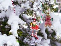 Dos decoraciones en conífera después de nevar Fotografía de archivo libre de regalías