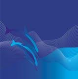 Dos delfínes ilustración del vector