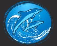 Dos delfínes Imagenes de archivo