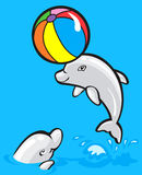 Dos delfínes del bebé Imagen de archivo