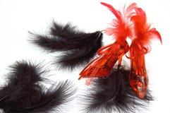 Dos deslizadores cristalinos rojos con las plumas Imágenes de archivo libres de regalías