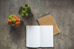Dos diarios y plantas que localizan en lugar de trabajo Fotos de archivo