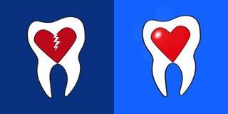 Dos dientes con los corazones dentro ilustración del vector