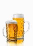 Dos diversos vidrios de cerveza Foto de archivo libre de regalías