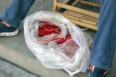 Dos en plastique plein des piments rouges photo stock