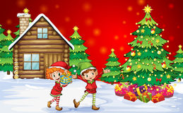 Dos enanos juguetones cerca de los árboles de navidad Fotos de archivo