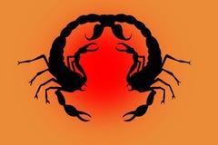 Dos escorpiones negros en un rojo Fotos de archivo libres de regalías
